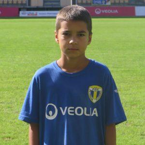 Darius Badea